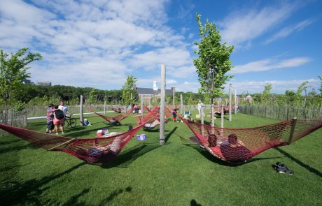 אי נולד: תושבי ניו יורק מסייעים להפוך בסיס צבאי סגור לפארק עירוני אהוב